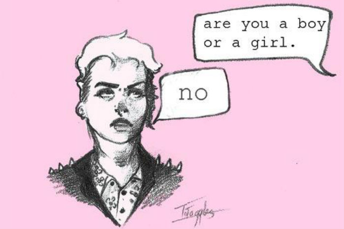 "A drawing of a genderqueer person that says ""Are you a boy or a girl"" with the person replying ""no"""