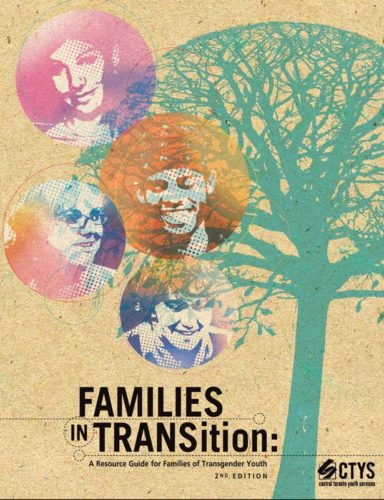 Families in transition document cover